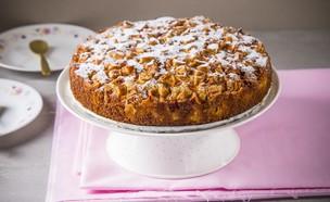 עוגת תפוחים ב-5 דקות (צילום: אפיק גבאי, מתכון לחיסכון)