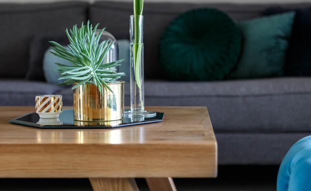 לימור אורן, שולחן סלון (9) (צילום: יחסי ציבור)