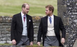 הנסיכים וויליאם והארי (צילום: יחסי ציבור)