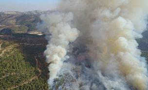 שריפת החורש ביער סטף (צילום: דוברות משטרת ישראל)