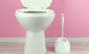 שירותים, אסלה ומברשת (צילום: kateafter | Shutterstock.com )
