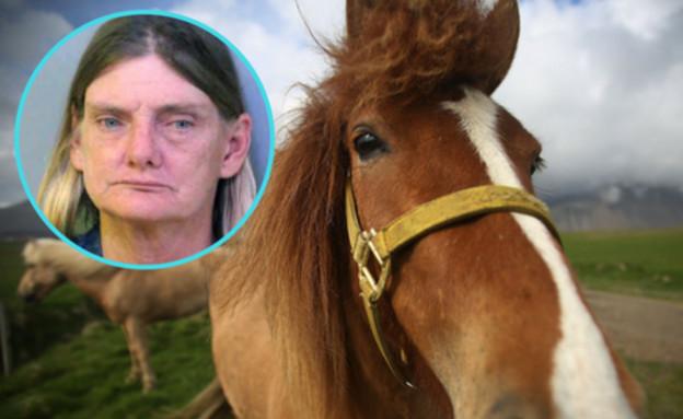 לא שותים ורוכבים: אישה נעצרה על נהיגה בשכרות. על סוס...