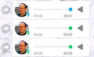 הודעות קוליות בוואטסאפ (צילום: יאיר מור, NEXTER)