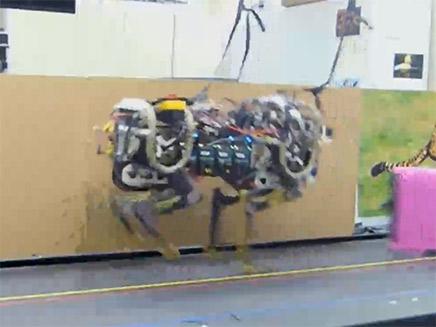 כלב רובוטי שנושא את ציוד הלוחמה