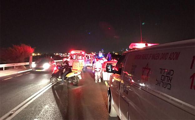 זירת התאונה בכביש 42 (צילום: דוברות מד