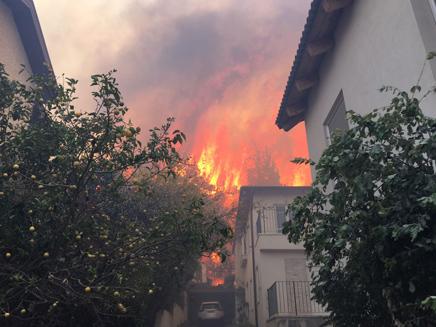 שריפת בתים בזכרון יעקב (ארכיון)