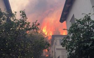 שריפת בתים בזכרון יעקב (ארכיון) (צילום: יוסי קרן)