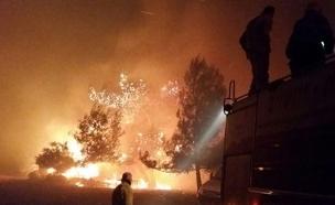 שנה לגל השריפות: חוזרים להריסות (צילום: דוברות כיבוי אש)