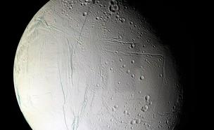 אנקלדוס (צילום: ויקיפדיה)