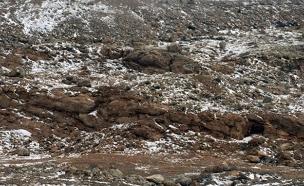 שלג קל בחרמון (ארכיון) (צילום: חדשות 2)