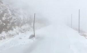 שלג קל בחרמון, היום (צילום: אבי אברט)