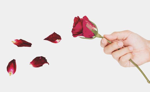 אהבה נגמרת (צילום: By Dafna A.meron, shutterstock)