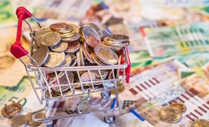 עגלת קניות מלאה במטבעות על רקע שטרות של שקלים (אילוסטרציה: kateafter | Shutterstock.com )