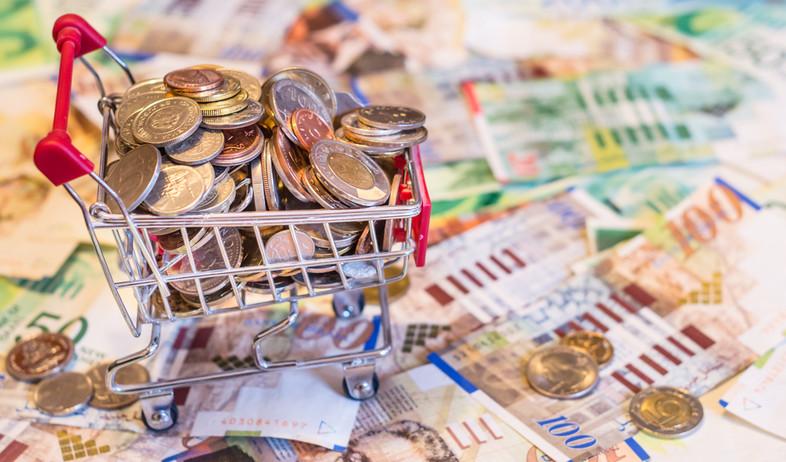 עגלת קניות מלאה במטבעות על רקע שטרות של שקלים (אילוסטרציה: By Dafna A.meron, shutterstock)