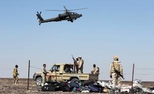 """איום מסיני - המלחמה בדאע""""ש (צילום: רויטרס)"""