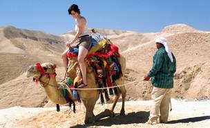 טיול גמלים במדבר יהודה (צילום: ChameleonsEye, shutterstock)