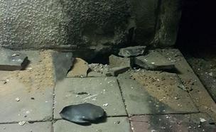 הרקטה שהתפוצצה הערב ביישוב בעוטף עזה (צילום: חמל קבטים)