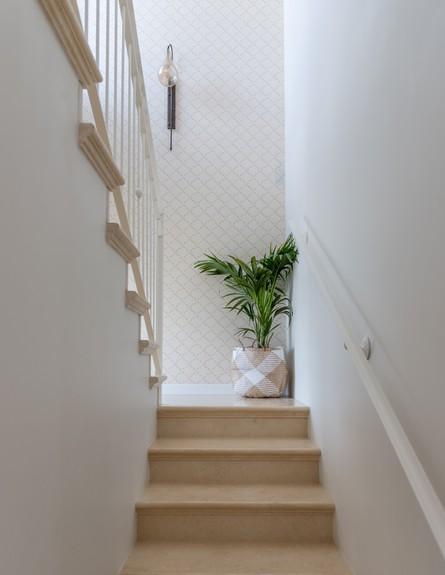 עינב גלילי, בשיפוץ, מדרגות ג (צילום: גלעד רדט)