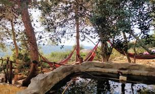 הר יללת התנים (צילום: נגה משל)