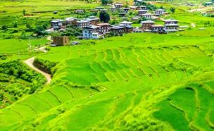 המדינה המאושרת בעולם (צילום: MC_Noppadol, shutterstock)