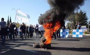 מחאת עובדי טבע, ארכיון (צילום: חיים גולדברג)