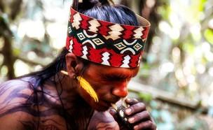 מסע לאמזונס (צילום: גוסטבו הוכמן)