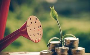 משקה כסף (אילוסטרציה: kateafter | Shutterstock.com )