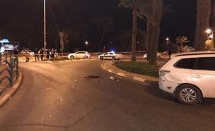 זירת הפיגוע בערד (צילום: דוברות המשטרה)