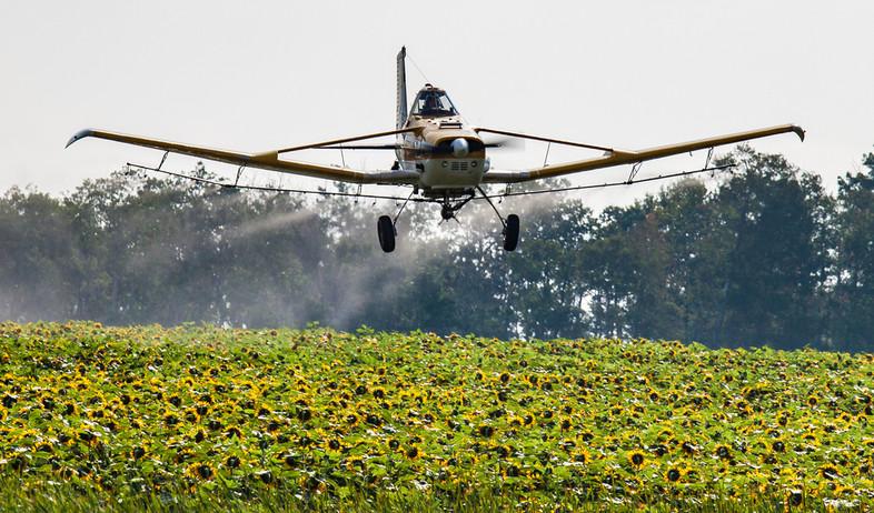 הדברה חקלאית (צילום: Steve Boyko, Shutterstock)