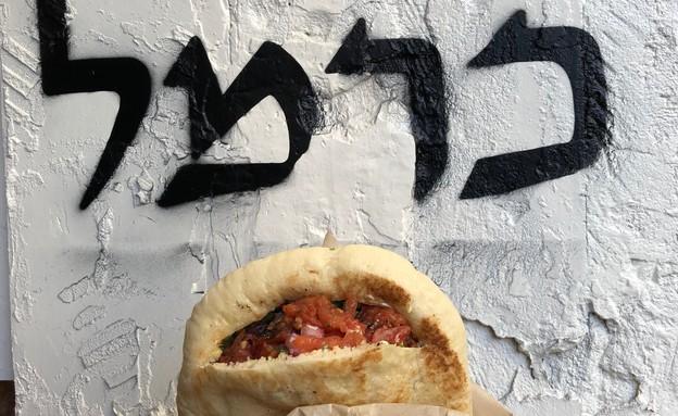 כרמל פיתות פיתה קבב (צילום: ריטה גולדשטיין, אוכל טוב)