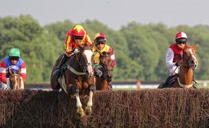 לא לוותר- מירוץ סוסים (צילום: flickr - Steve Higgins)