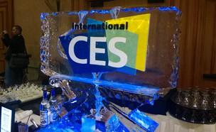 לוגו CES בתערוכה ב-2014 (צילום: יאיר מור, NEXTER)