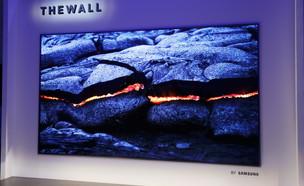 """הקיר (צילום: יח""""צ)"""