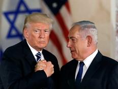 זוכה לאהדת הציבור הישראלי (צילום: רויטרס)