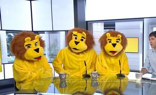 קמפיין שיימינג יצירתי: אריות החניון (צילום: הבוקר של קשת , קשת 12)
