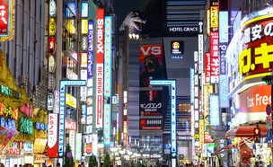 Tokyo Night Life (צילום: By Dafna A.meron, shutterstock)