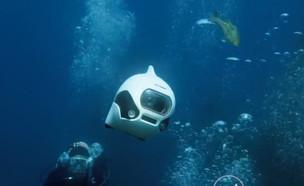 """דג רובוטי על שלט (צילום: מתוך """"נקסט"""", קשת 12)"""