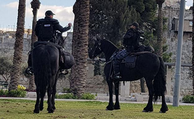 שוטרים ליד שער שכם בירושלים (צילום: חדשות 2)