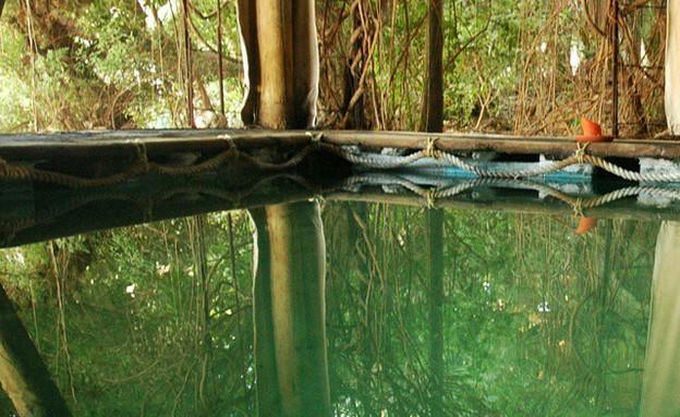 סתלבט על המים (צילום: דנה גונדא)