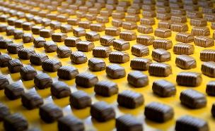 האם השוקולד בדרך להיעלם מהעולם? (צילום: רויטרס)