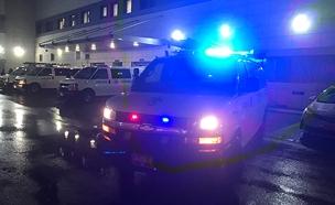 ניידות המשטרה (צילום: חדשות 2)