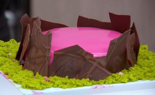 """עוגת האגם הנעלם (צילום: מתוך """"בייק אוף ישראל"""", שידורי קשת)"""