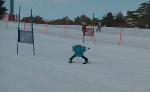 """רובוטים גולשי הסקי  (צילום: מתוך """"נקסט"""", קשת 12)"""