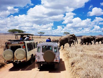 טנזניה (צילום: אדי גרלד)