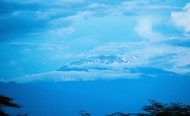 טנזניה (צילום: טל שחר)