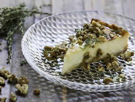 הצוענייה - עוגת גבינה (צילום: אוהד קאב, יחסי ציבור)
