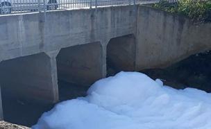 הנחל המזוהם (צילום: רם סלהוב, איגוד ערים אשקלון)