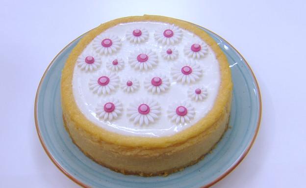 עוגת גבינה ושוקולד לבן (צילום: מתוך