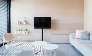 דירה בבזל, עיצוב המעצבות - ליטל רוזנשטיין, סלון (צילום: אביעד בר נס)