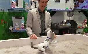 """הכירו את צעצועי העתיד (צילום: מתוך """"נקסט"""", קשת 12)"""
